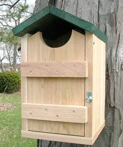 (Looker Products Screech Owl, Kestrel and Flicker House)