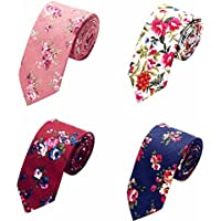 AUSKY 4 Packs Fashion Floral Skinny Neckties for Men Boys in Different Color