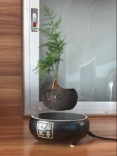 Japanese style Levitating Air Bonsai Pot - Magnetic Levitation Suspension flower (Black) by Thinker9999
