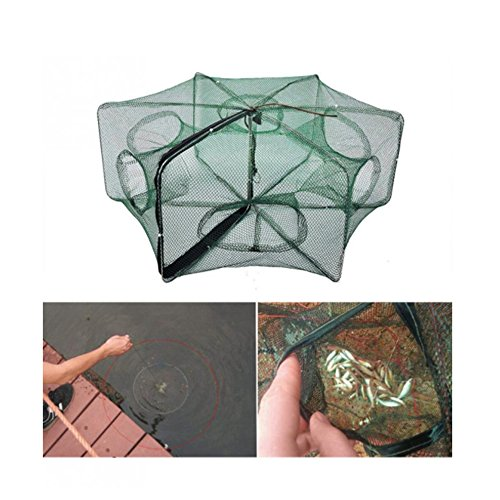 RG Portable Collapsible Fishing Net Trap Landing Net Trap Cast Dip Cage Automatic for Fish Shrimp Minnow Crayfish Crab Baits (Automatic 6 sides 6 Holes)