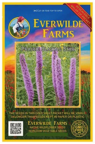 (Everwilde Farms - 300 Prairie Blazing Star Native Wildflower Seeds - Gold Vault Jumbo Seed Packet)