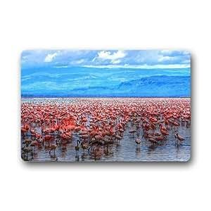 Pink Flamingo Background Doormat/Gate Pad for outdoor,indoor,bathroom use!23.6inch(L) x 15.7inch(W)