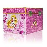 Disney Parks Aurora Musical Jewelry Box