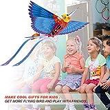 HANVON Go Go Bird Flying Toy,Mini RC Flying Bird