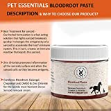 Vet Care Sarcoid Paste for Equine Sarcoid Removal