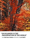 In Wildness Is the Preservation of the World