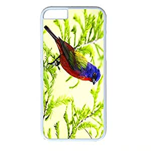 Hard Back Cover Case for iphone 6,Cool Fashion White PC Shell Skin for iphone 6 with Colorful Bird