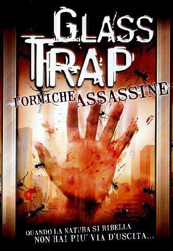 glass-trap-formiche-assassine-import-by-stella-stevens