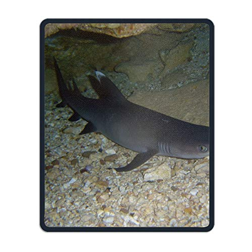 Palette Animal White Tipped Reef Shark Mouse Pad Funny Awesome Customized, Rectangle