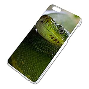 Green Snake Python Slim Fit Hard Case Fits Apple iPhone 6 Plus