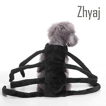 Zhyaj Ropa Divertida para Mascotas Disfraz Halloween Cool Big ...
