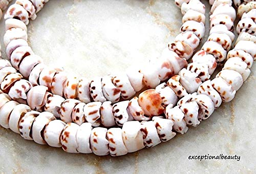 (Pendant Jewelry Making Tiger Puka 7-8mm Tropical Bead Surfer Sea Cone Shell Beads 16 Inch Strand)