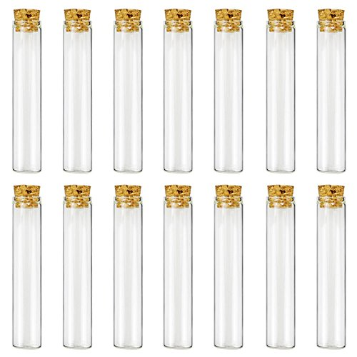 10 best test tubes glass flat bottom for 2019