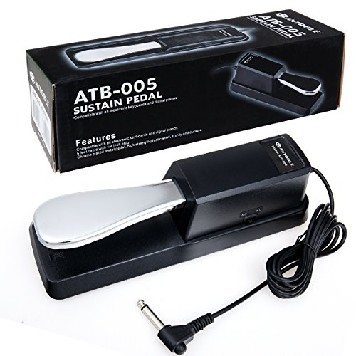 Sustain Pedal Piano Style for Casio WK-240/WK240/WK-245/WK245/WK-7600/WK7600 Keyboard Footswitch, Damper Pedal