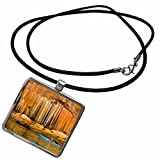 3dRose Danita Delimont - Kayaking - Kayaking, Pictured Rocks, Lake Choice, MI - US23 SMA0001 - Stephen Matera - Necklace With Rectangle Pendant (ncl_91217_1)