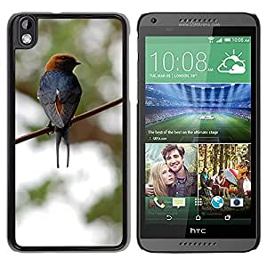 Super Stella Slim PC Hard Case Cover Skin Armor Shell Protection // M00147906 Bird Wire Fly Wings Feather // HTC Desire 816