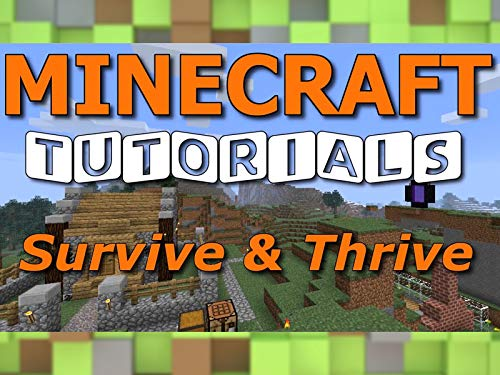Clip: Survive & Thrive Minecraft Tutorials By Paul Soares on Amazon Prime Video UK