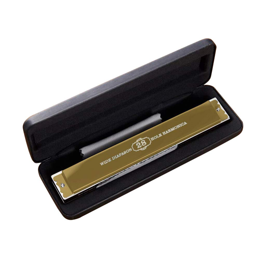 DZXM Harmonica 28 Holes Polyphony C Tone Adult Child Professional Performance Musical Instrument