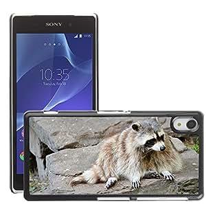 Super Stella Slim PC Hard Case Cover Skin Armor Shell Protection // M00147249 Raccoon Wash-Bear Animal Wildlife // Sony Xepria Z2 L50W