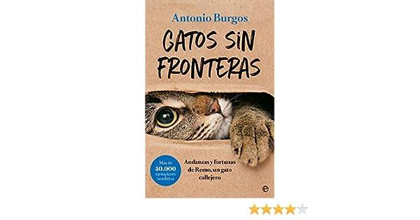 Gatos sin fronteras: Andanzas y fortunas de Remo, un gato callejero Fuera de colección: Amazon.es: Burgos Herce, Antonio: Libros