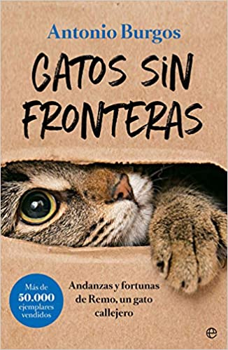 Gatos sin fronteras: Andanzas y fortunas de Remo, un gato callejero Fuera de colección: Amazon.es: Antonio Burgos Herce: Libros