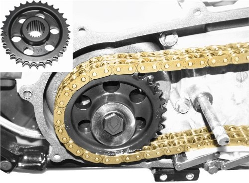 Evolution Industries 30 tooth Sprocket and Chain Kit EV1012-1231 Compensator Sprocket