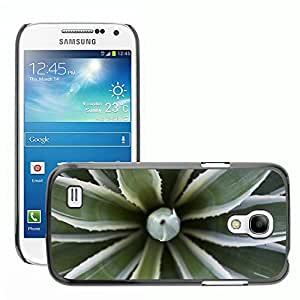 Super Stellar Slim PC Hard Case Cover Skin Armor Shell Protection // M00051041 aero macro agave plant fresh // Samsung Galaxy S4 Mini i9190