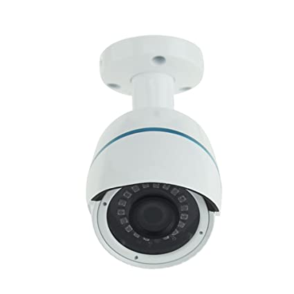 Miyare Cámara Simulada IP Inalámbrico Impermeable Sistema de Vigilancia IR LED (LBN24S400)