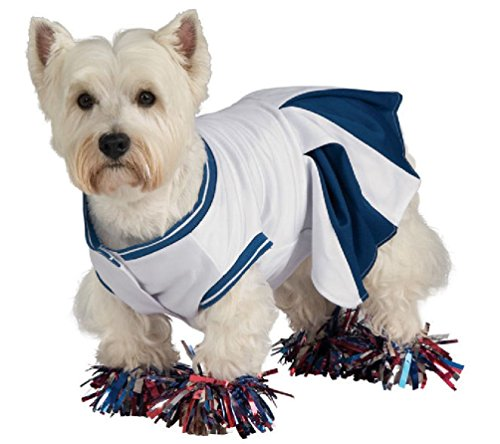 Dog Mobster Costume (Blue Cheerleader Uniform Dog Pet Costume)