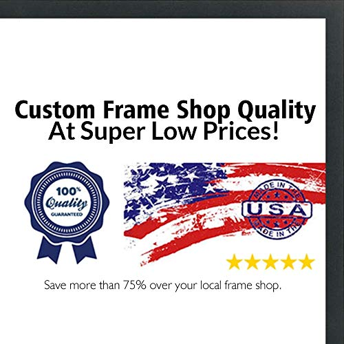 (Poster Palooza 28x36 Contemporary Black Wood Picture Frame - UV Acrylic, Foam Board Backing, Hanging Hardware Included!)