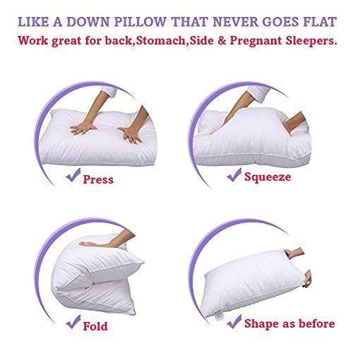 Buy my pillow best buy