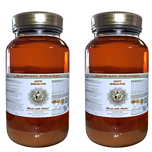 Gut Health, VETERINARY Natural Alcohol-FREE Liquid Extract, Pet Herbal Supplement 2x32 oz by HawaiiPharm