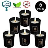 Best Citronella Candles - YYCH Soy Candle Lemongrass Citronella Natural Candle Review