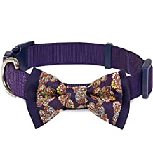 """Blueberry Pet Paisley Floral Prints Handmade Detachable Bow Tie Dog Collar in Dark Orchid, Medium, Neck 14.5""""-20"""", Collars Accessories for Boy Girl Dogs"""