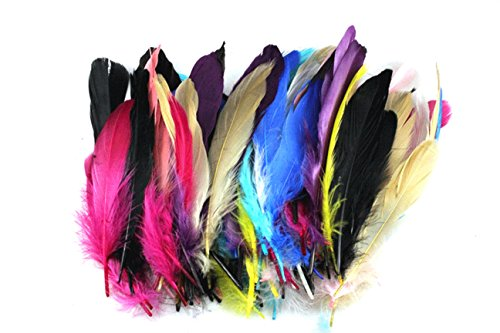 100PCS Dyed Goose Feather For Art, Home or Party 6-8inch (6