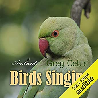 Birds Singing: Ambient Sound for Mindful State (Audio