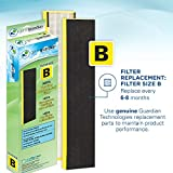 Germ Guardian True HEPA Filter Air Purifier for