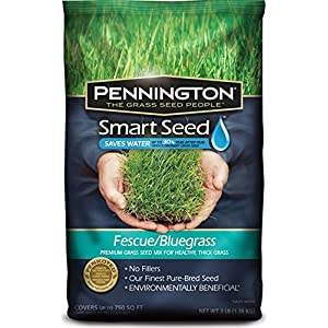Pennington GL61100526630 100526630 Smart Seed, 3 LB, Green