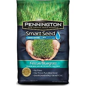 Pennington GL61100526630 100526630 Smart Seed, 3 LB, Green