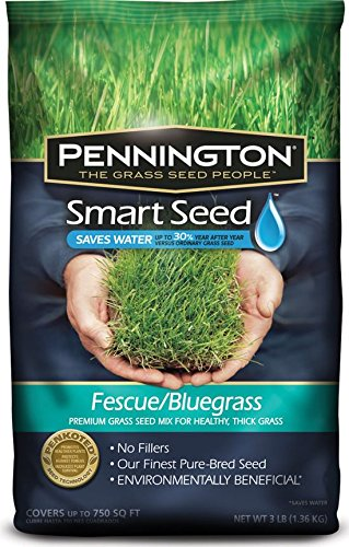 Pennington Smart Seed Fescue/Bluegrass Mix, 3 lb