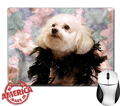 "Images Costumes (Luxlady Natural Rubber Mouse Pad/Mat with Stitched Edges 9.8"" x 7.9"" fifi in her costume IMAGE ID 255867)"