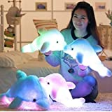 Kreative Nacht bunte LED-Licht Weich Spielzeug leuchtende Stuffed Delphin Plüschtiere Relax Kissen Puppen Geschenke