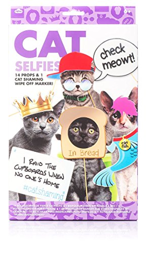 NPW NP21370 Cat Selfie Photo Props, One Size
