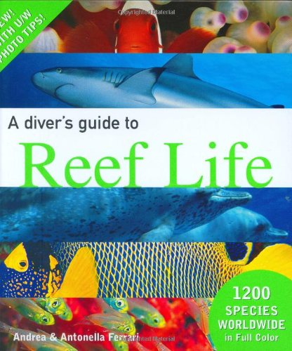 A Diver's Guide to Reef Life (Reef Life)