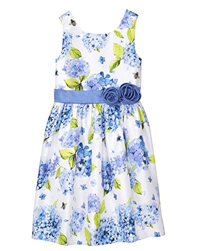Gymboree Girls' Little Sleveless Floral Print Dress, Periwinkle Blooms, 10