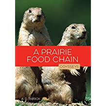 A Prairie Food Chain