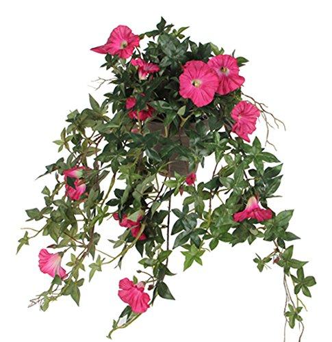 MICA Decorations 976713 Blumen, Petunia, Rosa