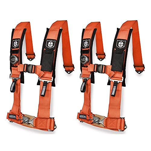 Pro Armor 4 Point Harness 3