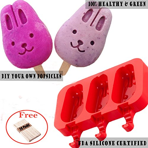 Bunny Mold (Silicone ICE POP Mold,DiDaDi 3 Cavities Cute ICE CAREM Bar Mould,Popsicle Molds DIY ICE CREAM Maker,Silicone Jelly Chocolate Candy Soap Molds with 20 Wooden Sticks - Bunny)