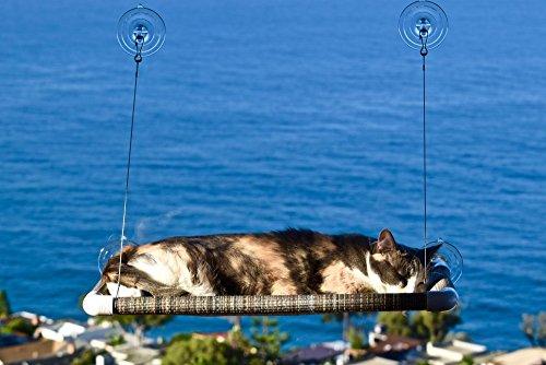 Amazon Com Original Kitty Cot World S Best Cat Perch Pet Window Perches Pet Supplies
